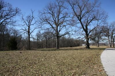 LOT #26 OLD RANCH & SADDLE BACK RIDGE ROAD, Harrison, AR 72601 - Photo 2