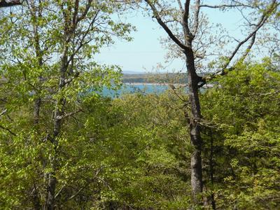 124 DEER PATH LN, Peel, AR 72668 - Photo 2