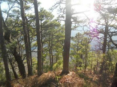 NC 8362, Jasper, AR 72641 - Photo 2