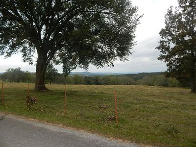 0 COUNTY ROAD 312, Berryville, AR 72616 - Photo 1