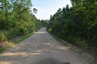 CANE BRANCH ROAD, Western Grove, AR 72685 - Photo 1