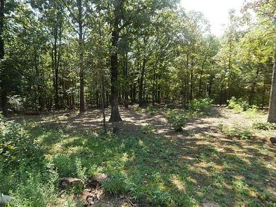 6978 COUNTY ROAD 905, ALPENA, AR 72611 - Photo 2