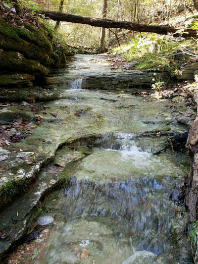 CR 2890, Marble Falls, AR 72648 - Photo 1