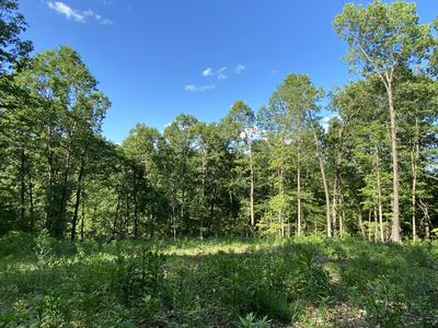 6.30 ACRES OFF NC 2900, Marble Falls, AR 72648 - Photo 1