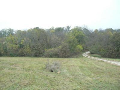 HIDDEN VALLEY ROAD, Lawson, MO 64084 - Photo 2