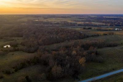 TBD SW 401ST ROAD, Chilhowee, MO 64733 - Photo 2