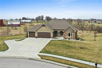 13601 SHORT CIR, SMITHVILLE, MO 64089 - Photo 1