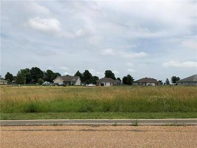 LOT 53 N WILLOW LANE, Concordia, MO 64020 - Photo 2