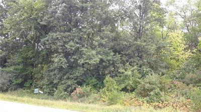 LOT 3 WHITETAIL ROAD, Polo, MO 64671 - Photo 2