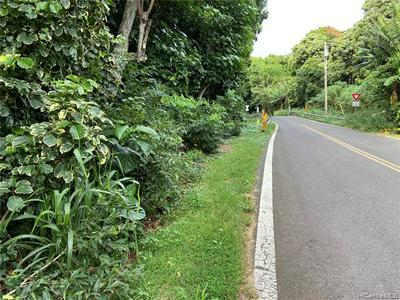 0000 KAMEHAMEHA V HIGHWAY, Kaunakakai, HI 96748 - Photo 2