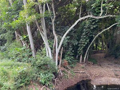 0000 KAMEHAMEHA V HIGHWAY, Kaunakakai, HI 96748 - Photo 1