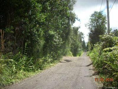 00 HOPUE ROAD, Kurtistown, HI 96760 - Photo 2