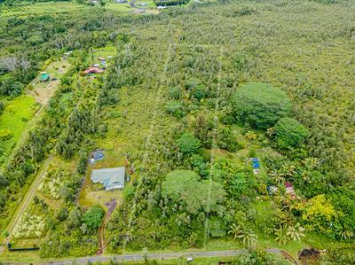 PUALANI ST, KEAAU, HI 96749 - Photo 2