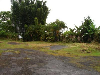 KAUMANA DRIVE, HILO, HI 96720 - Photo 2