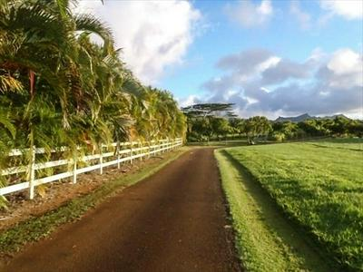 KAPUNA ROAD, Kilauea, HI 96746 - Photo 1
