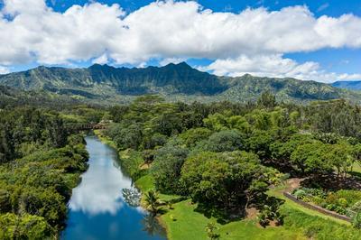 KAMOOKOA RD, Kilauea, HI 96754 - Photo 2