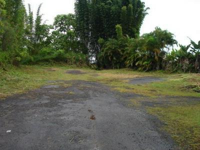 KAUMANA DRIVE, HILO, HI 96720 - Photo 1