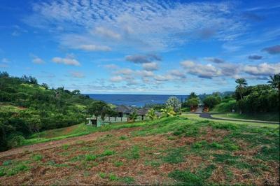 PALI MOANA PL, Kilauea, HI 96754 - Photo 1