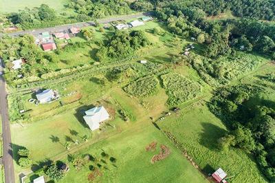KULAIMANO RD, PEPEEKEO, HI 96783 - Photo 2
