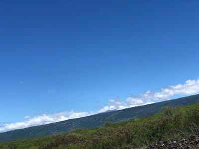 85-4503 HALAKAHI PLACE, Captain Cook, HI 96704 - Photo 1
