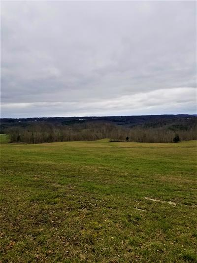 500 CUB RUN HOLLOW RD, CUB RUN, KY 42729 - Photo 1