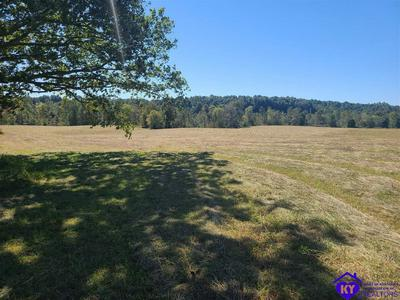 400 CUB RUN HOLLOW RD, CUB RUN, KY 42729 - Photo 2