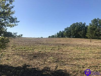 LOT 0 ALLEN ROAD, BRANDENBURG, KY 40108 - Photo 2