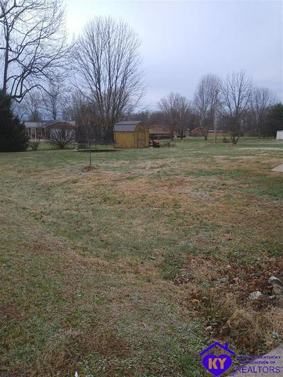 165 WOODLAWN RD, BARDSTOWN, KY 40004 - Photo 2
