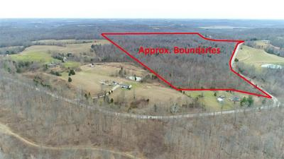 0 LONE HILL ROAD, FALLS OF ROUGH, KY 40119 - Photo 2