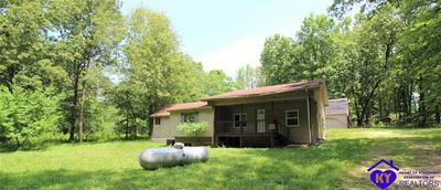 175 WILSON PL, BRANDENBURG, KY 40108 - Photo 1
