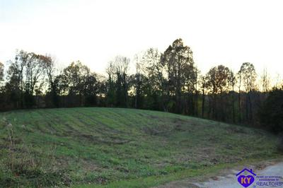 0 BALL HOLLOW ROAD, HODGENVILLE, KY 42748 - Photo 2