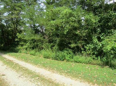 0 CLOVERPORT SAND AND GRAVEL ROAD, CLOVERPORT, KY 40111 - Photo 1