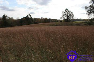 3771 BEAVER DAM RD, LEITCHFIELD, KY 42754 - Photo 1