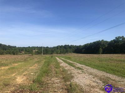 LOT 0 ALLEN ROAD, BRANDENBURG, KY 40108 - Photo 1