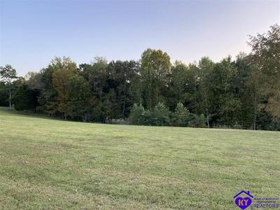 0 PHELPS JOHNSON ROAD, LEITCHFIELD, KY 42754 - Photo 1