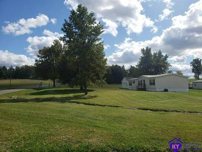 20 TROOPER HILL LN, RINEYVILLE, KY 40162 - Photo 2