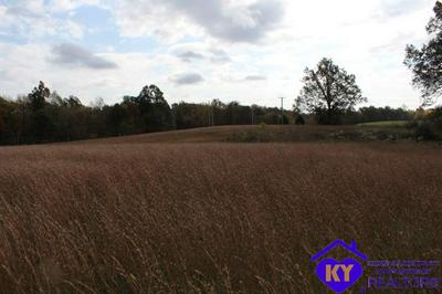 3771 BEAVER DAM RD, LEITCHFIELD, KY 42754 - Photo 2