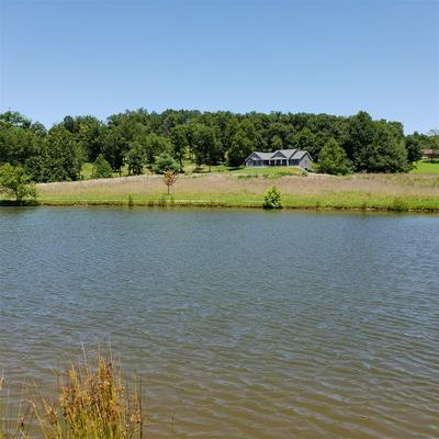 78 EASY ST, FALLS OF ROUGH, KY 40119 - Photo 2
