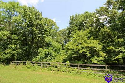 175 WILSON PL, BRANDENBURG, KY 40108 - Photo 2