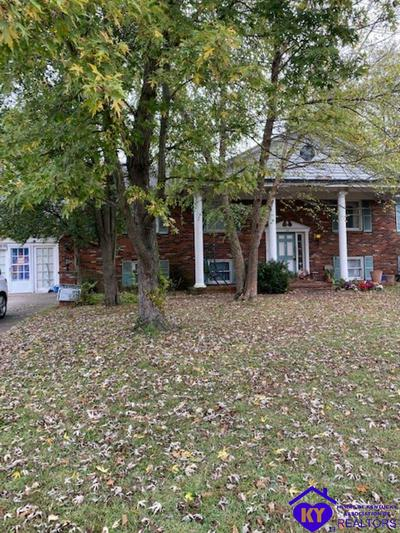 713 N MAIN ST, LEITCHFIELD, KY 42754 - Photo 2