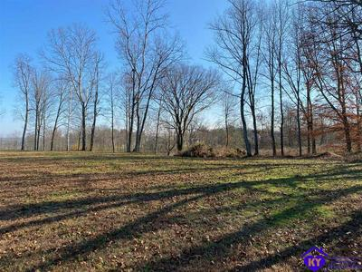 400 RIVER EDGE RD, BRANDENBURG, KY 40108 - Photo 2