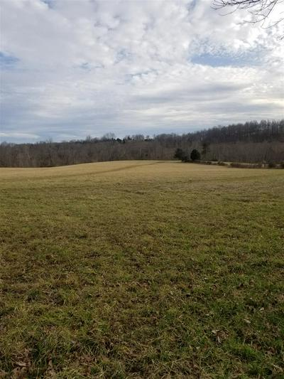 0 CUB RUN HOLLOW ROAD, CUB RUN, KY 42729 - Photo 1
