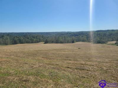400 CUB RUN HOLLOW RD, CUB RUN, KY 42729 - Photo 1