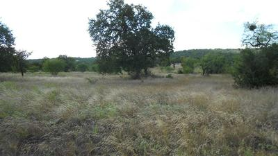 52 PRISTINE PASS, Buchanan Dam, TX 78609 - Photo 2