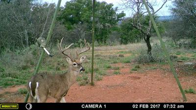 4699 COUNTY ROAD 405, Castell, TX 76831 - Photo 1