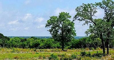 000 CR 250 ROAD, Burnet, TX 78611 - Photo 1