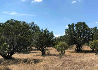 LOT K1037 CHAMELEON, Horseshoe Bay, TX 78657 - Photo 1