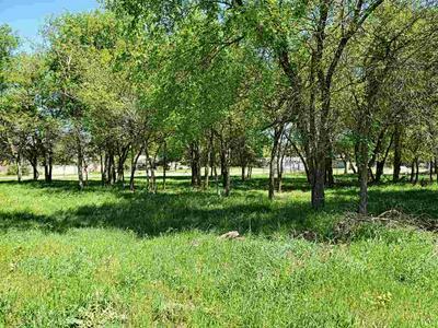 474 LAKEVIEW DR, COTTONWOOD SHORES, TX 78657 - Photo 2