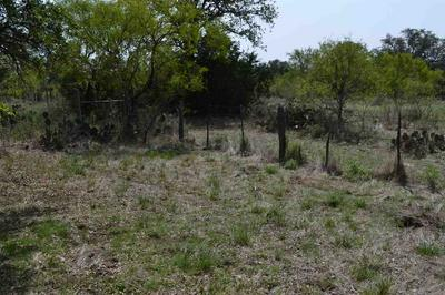 1305 OLD SPANISH TRL, Buchanan Dam, TX 78609 - Photo 2