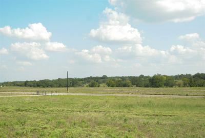 LOT 10 DELOREAN CIRCLE, Burnet, TX 78611 - Photo 1